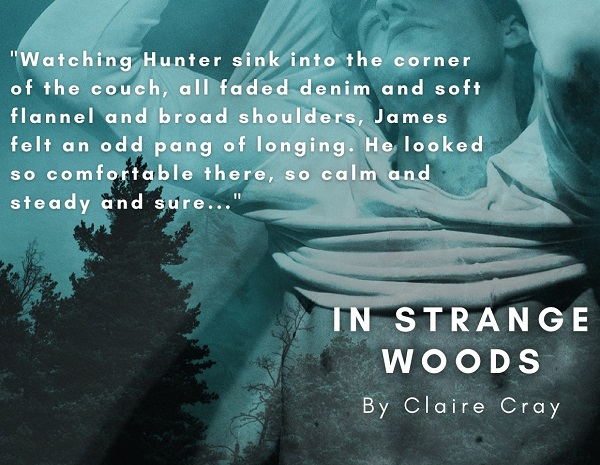 Watching Hunter sink into the corner of the couch, all faded denim and soft flannel and broad shoulders, James felt an odd pang of longing. He looked so comfortable there, so calm and steady and sure…