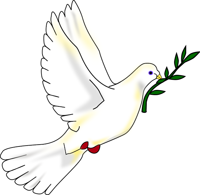 معنى السلم والسلام