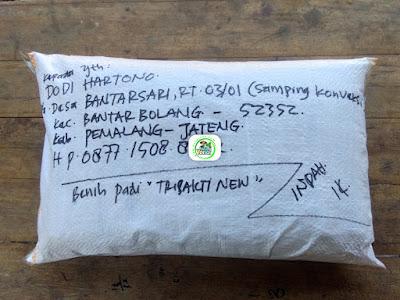 Benih pesanan DODI HARTONO Pemalang, Jateng.   (Setelah Packing dan mau dibawa pulang)