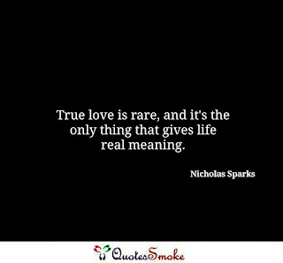 Love Quote by Nicholas Sparks