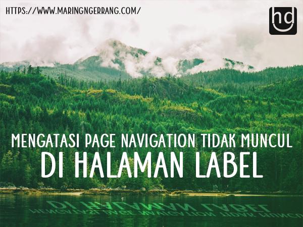 Mengatasi Page Navigation Tidak Muncul di Halaman Label