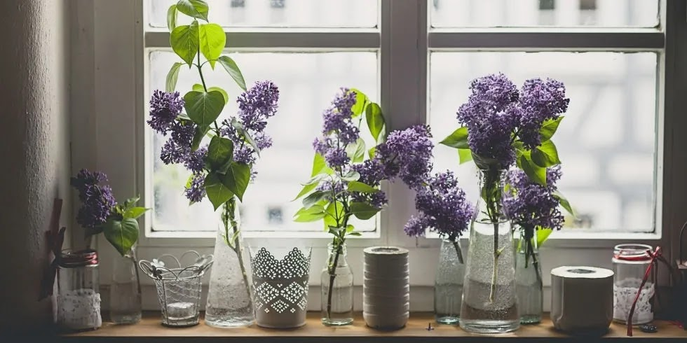 كيف تجعل رائحة منزلك جيدة (حسنًا ، رائع) طوال الوقت clean house1