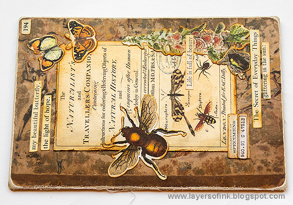 Layers of ink - Vintage Nature Notebook Tutorial by Anna-Karin Evaldsson.