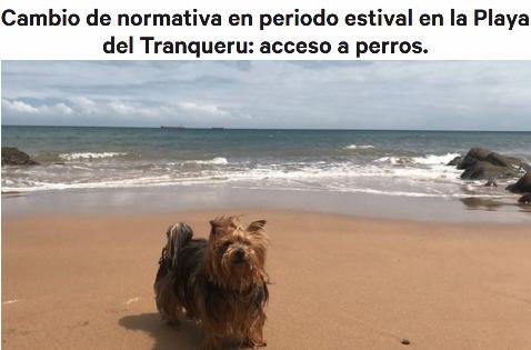 https://www.change.org/p/cambio-de-normativa-en-periodo-estival-en-la-playa-del-tranqueru-acceso-a-perros?recruiter=783439891&utm_source=share_petition&utm_medium=facebook&utm_campaign=petition_dashboard&recruited_by_id=26287e30-9b01-11e7-8c0f-0340508bec96&utm_content=starter_fb_share_content_es-es%3Av3&fbclid=IwAR0e3VsU70LqL4KBhMTiTCAr3LSFOj3JoKBuYVwe87d013Vci9EpVgtenFI