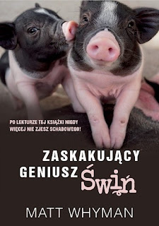 Matt Whyman. Zaskakujący geniusz świń.