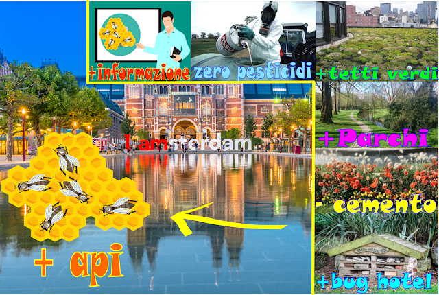 Amsterdam: una città a misura di ape