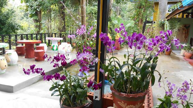 ресторанчик в парке Khao Cok