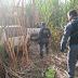 Carros roubados em Brasnorte e Diamantino são recuperados pela PM em área rural de Campo Novo