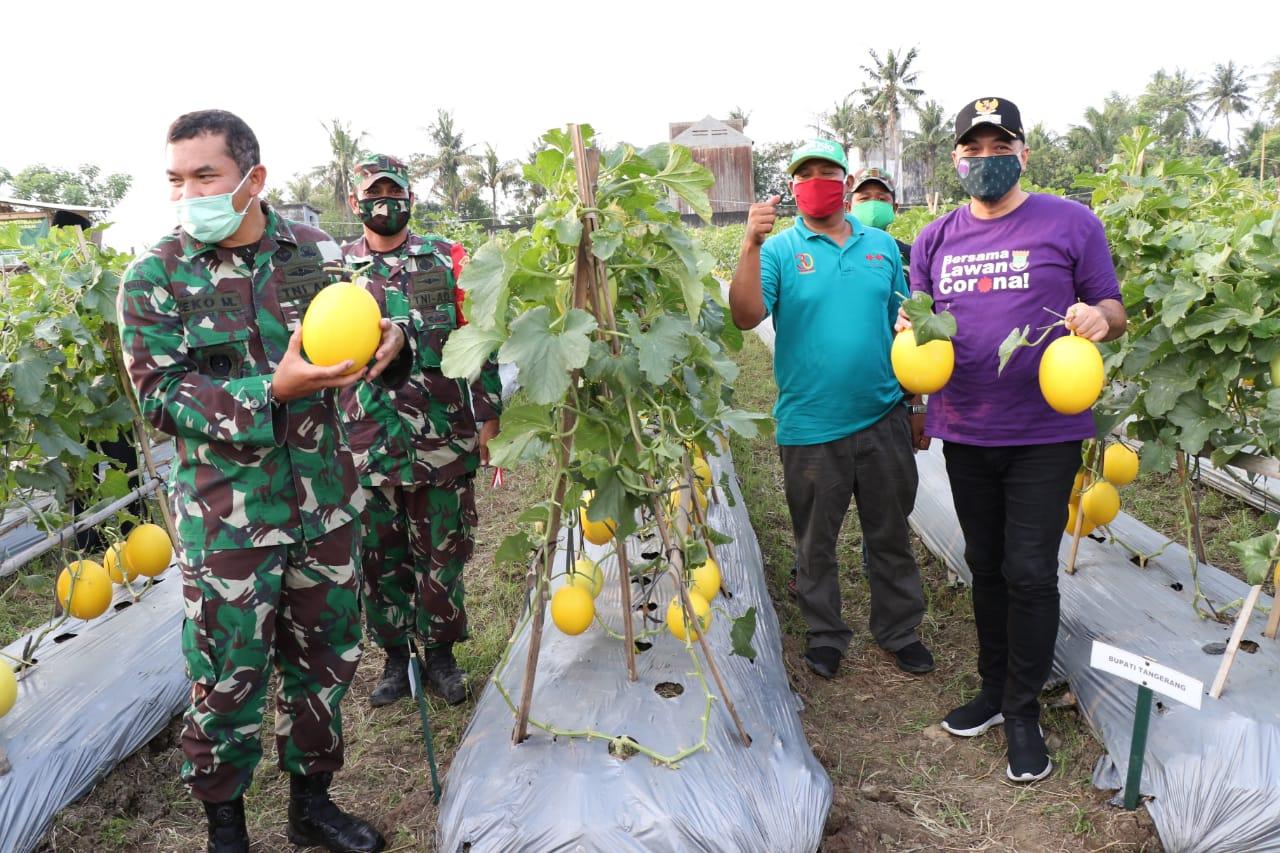 Pangdam Jaya dan Bupati Panen Raya, Perkuat Ketahanan Pangan Ditengah Pandemi Covid-19 >> https://www.onlinepantura.com/2020/05/pangdam-jaya-dan-bupati-panen-raya.html