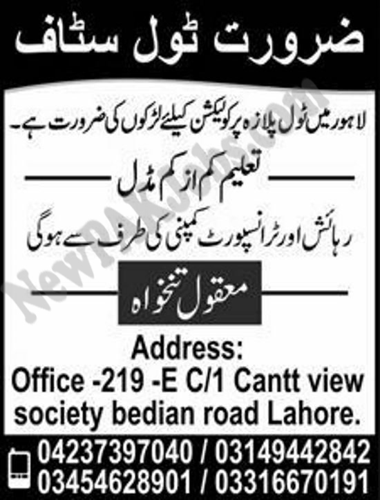 Jobs for Tool Plaza Collection Education Middle required