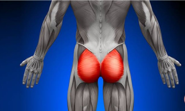 How To Lose Buttocks Fat ? | Get Best Solution
