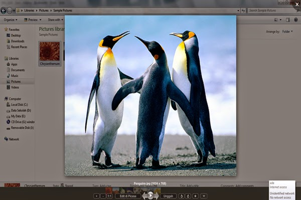 Download Aplikasi Picasa 3.9 Gratis