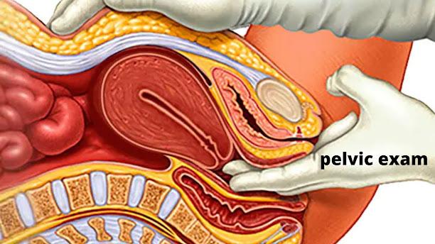 pelvic exam for uterine fibroid