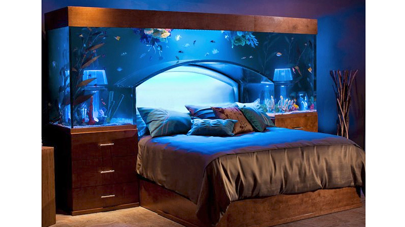 Custom Made Beds Image Gallery: Beautiful Styles Of Fish Aquariums