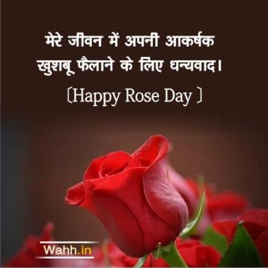 Happy Rose Day Quotes for Wife In Hindi