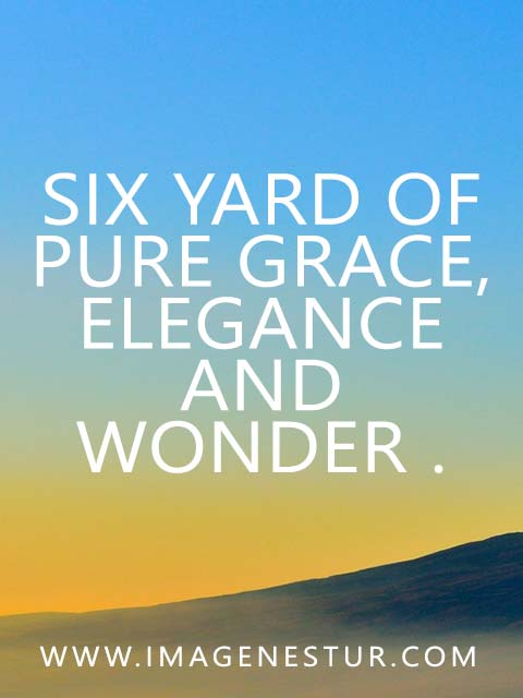 Six yard of pure grace,elegance and wonder