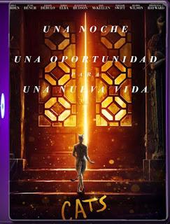 CATS (2019) HD [1080P ] 60FPS  Latino [Google Drive] Panchirulo
