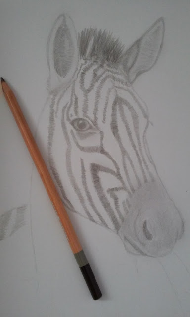 Zebra sketch, art