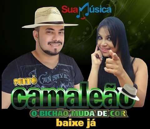 cd forro camaleao
