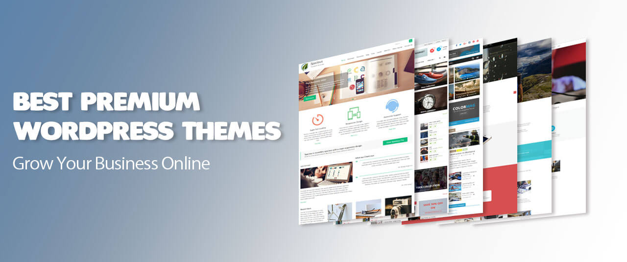 Perpetual Strategic Services 10 Best Wordpress Themes For Web Agencies And Seo Companies