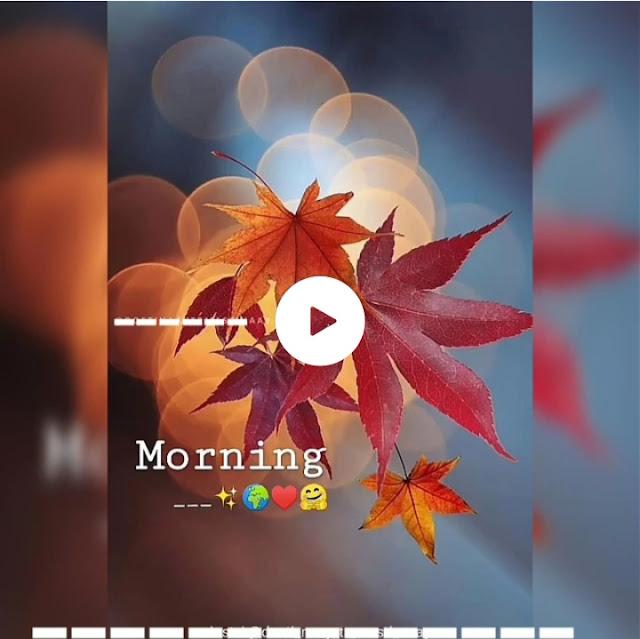 love love status for good morning