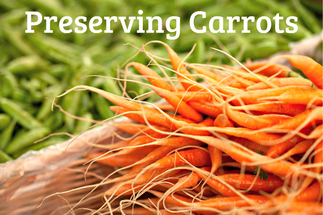 8 ways to preserve carrots: freezing, canning, fermenting and more
