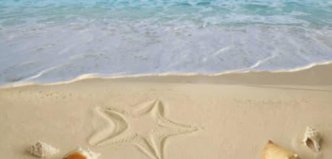 Cát trên bãi biển đến từ đâu?