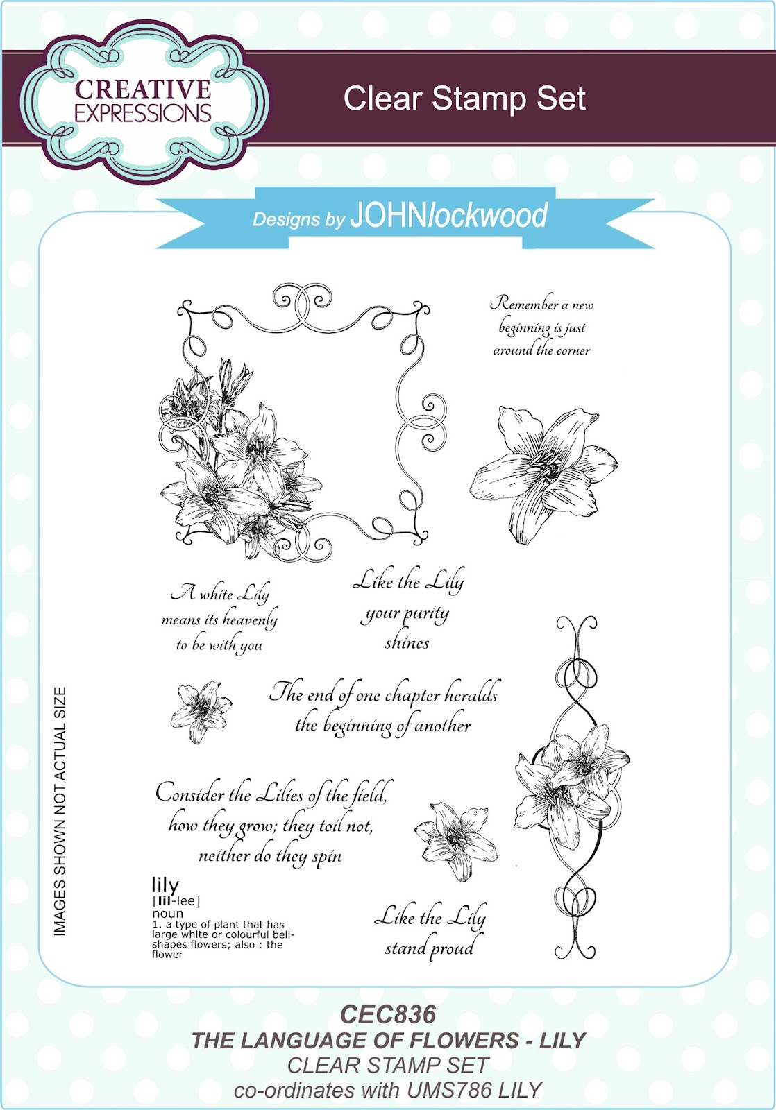 John next door the language of flowerslly here is the lily clear set followed by the a6 rubber stamp of the single spray izmirmasajfo