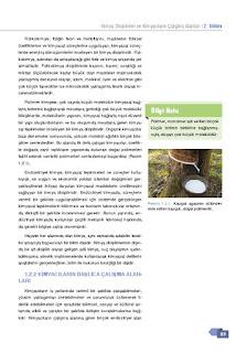 9. Sınıf Kimya Ders Kitabı Cevapları Sonuç Yayınları Sayfa 23