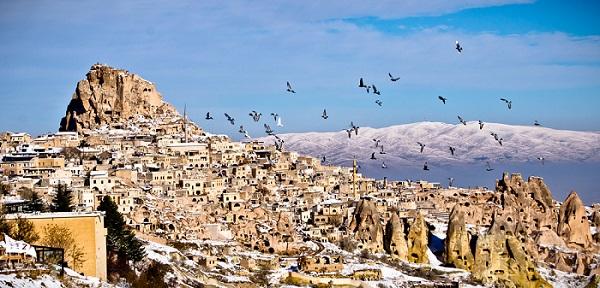 Pigeon Valley Turki