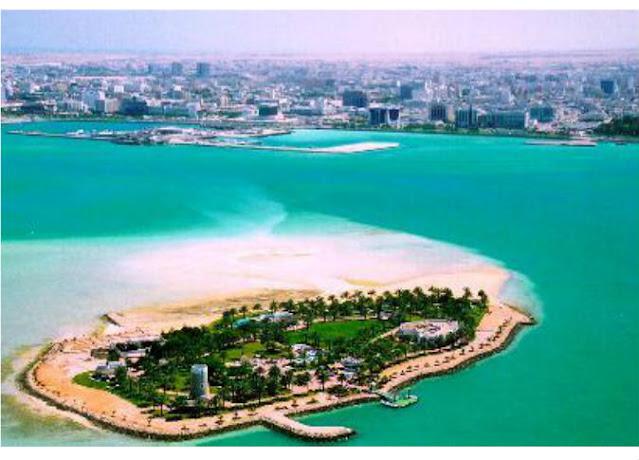 جزيرة النخيل