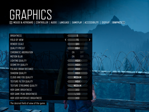 Days Gone PC graphics settings