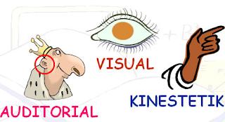 gaya belajar kinestetik, visual auditori