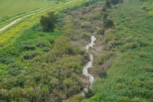 נהר הירדן