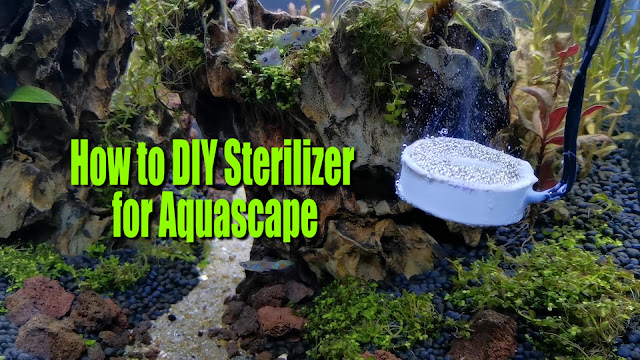 How To DIY Aquascape Sterilizer | Inhibit Green Algae