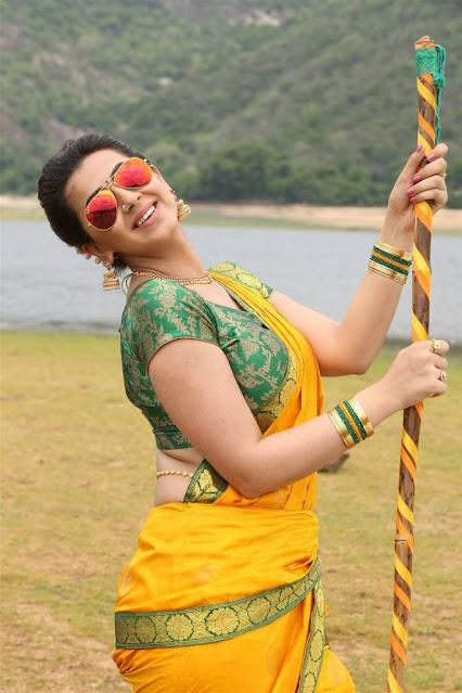 Nikki Galrani Kannada Actress Latest Cute Stills In Saree Actress Trend