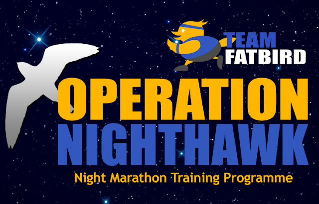 Operation NightHawk 2016: Sundown Marathon Training