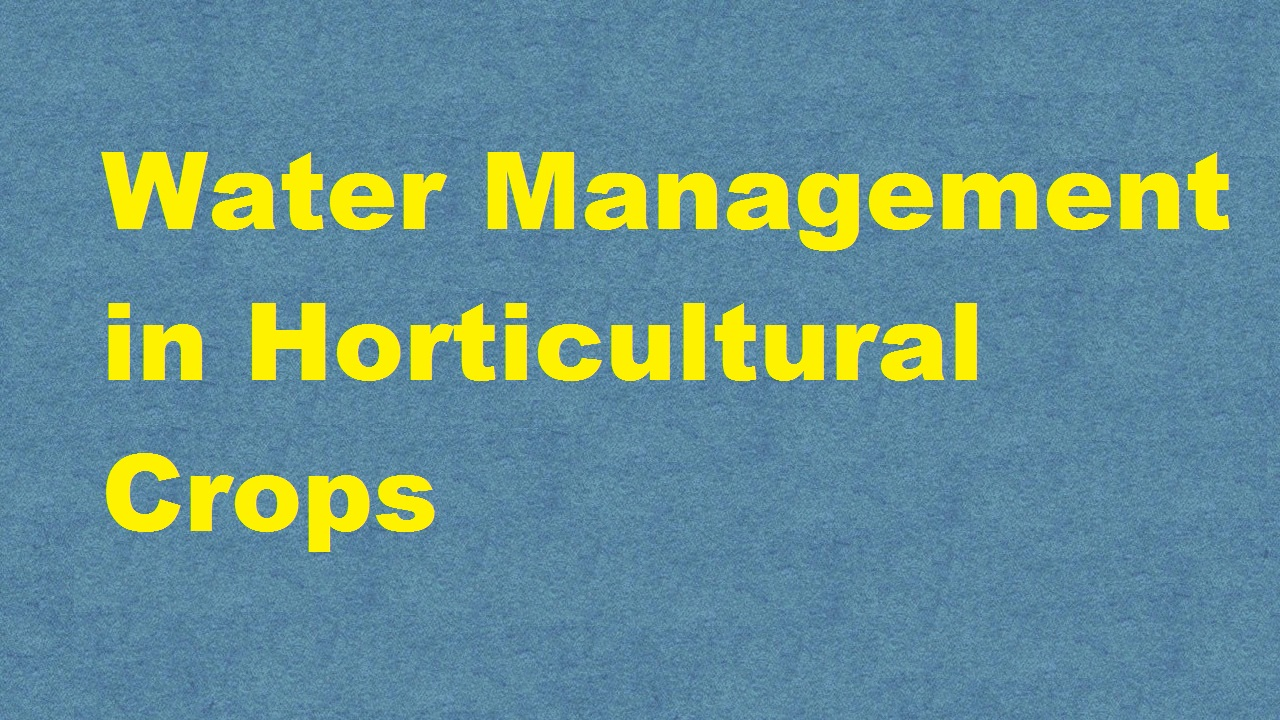 Water Management in Horticultural Crops ICAR E course Free PDF Book Download e krishi shiksha