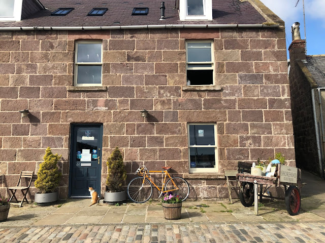 Cute Stonehaven houses and a cat