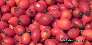 I prodotti dell'azienda biologica e biodinamica sono principalmente oleoliti di lavanda, lavandino, rosmarino, salvia, rosa, iperico, elicriso,cipresso, sli aromatizzati, salamoia, timo, issopo, maggiorana, gelatina di tarassaco, confettura di petali di rosa, confetture varie di piccoli frutti, fichi, ribes bianco rosso e nero, uva spina, prugne, lamponi, fragoline, amarene, lavanda e ghirlande