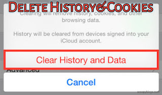 Regularly Delete Cookies and History of Browser