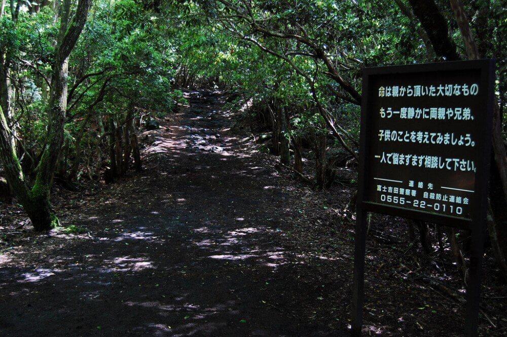 Aokigahara Japonya