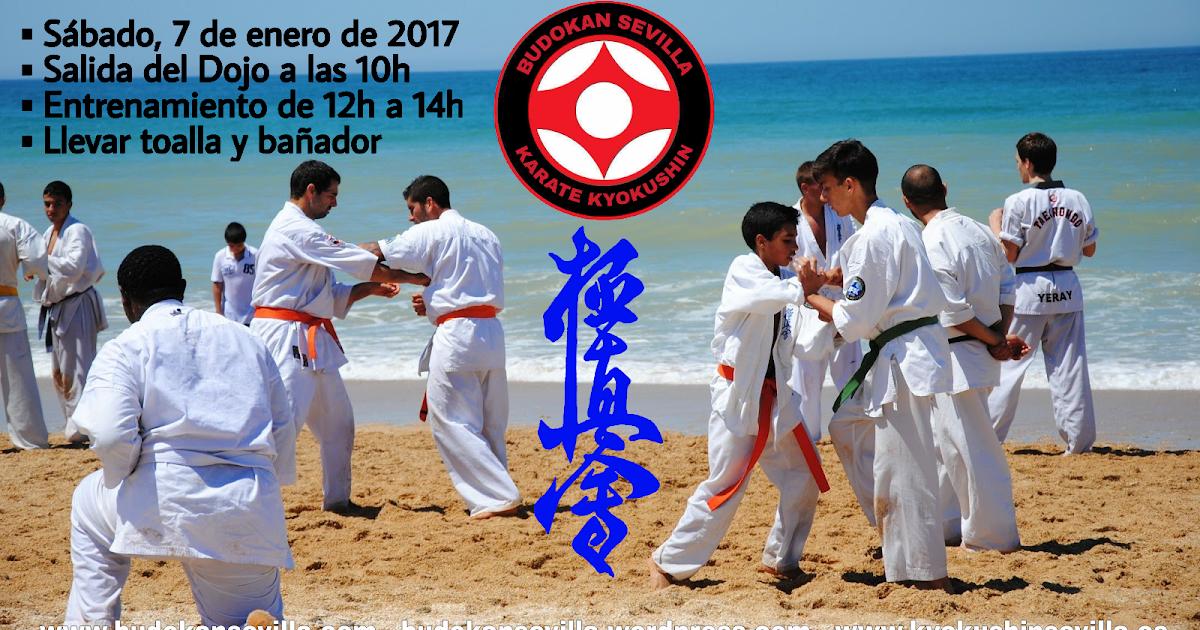 Budokan blog de artes marciales kagami biraki 2017 - Artes marciales sevilla ...