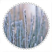 Wahne Heide im Winter