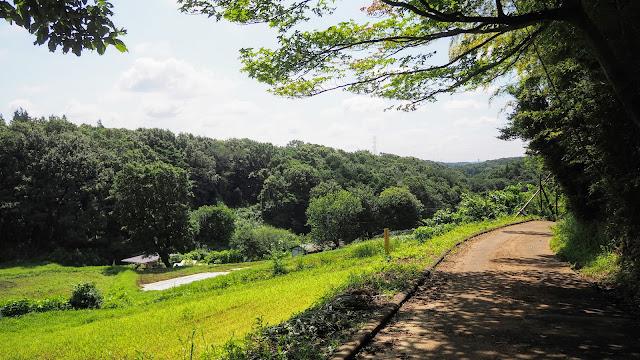 南多摩尾根幹線道路南側の丘陵地帯を上り下りしながら周遊するルート。「裏尾根幹」は通称で正式に決まったルートがある訳では有りません。矢野口から長池公園まで黒川や小野路、小山田など寄り道しまくりながら往復するサイクリングコース。