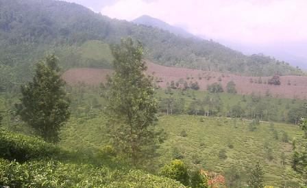 Taman Riung Gunung Bogor taman wisata riung gunung bogor lokasi taman riung gunung bogor lokasi taman riung gunung puncak bogor