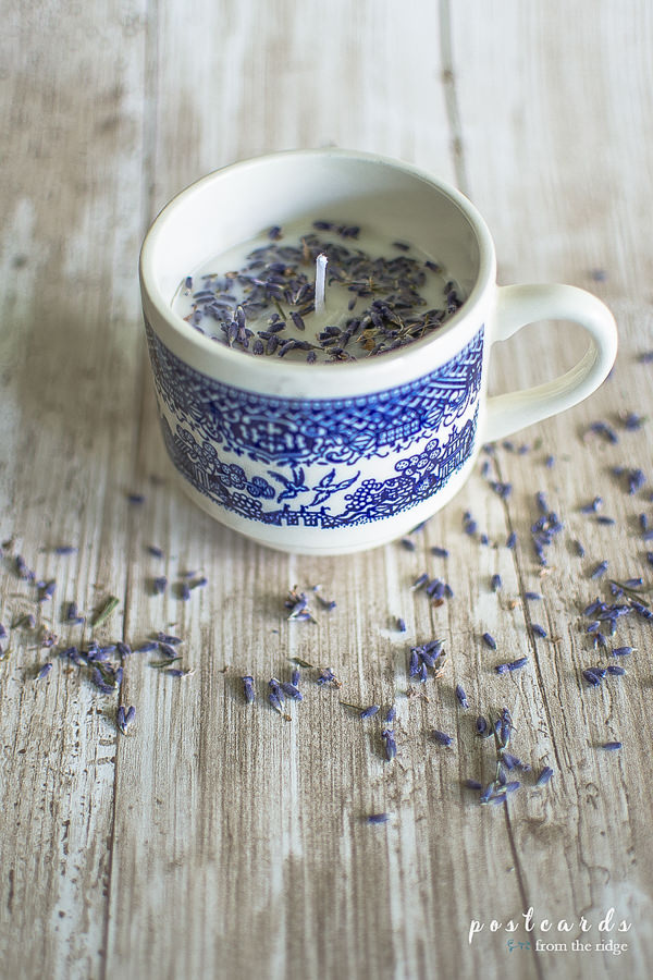 blue and white teacup lavender candle with lavender buds