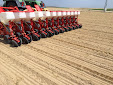 Sowing Sugar beet with Maschio Gaspardo