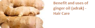Benefit and uses of ginger oil (adrak) -  Hair Care