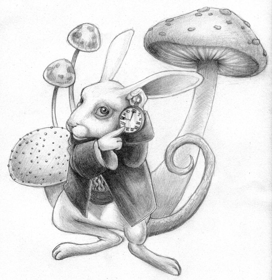 Music Like That Rat a Tat Tat: Jefferson Airplane White Rabbit